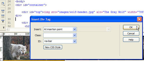 The Insert Div Tag Dialog
