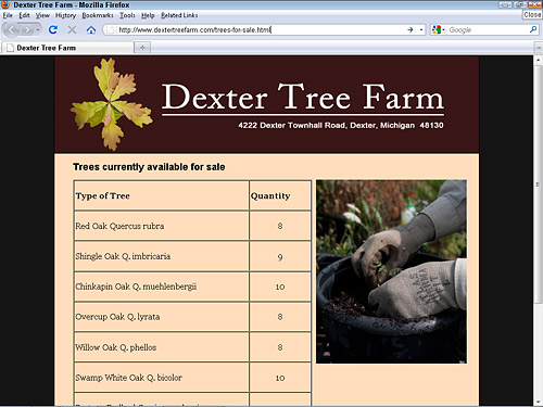 Dexter Tree Farm uses a table to list Native Michigan trees for sale
