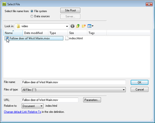 Select the file you want to insert into the page