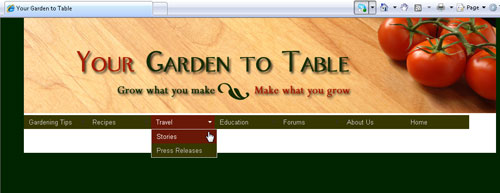 PREVIEW IN A WEB BROWSER