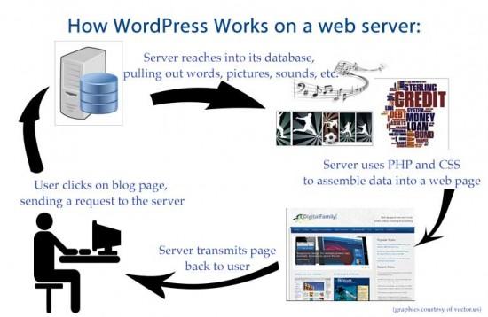 how wordpress works on a server